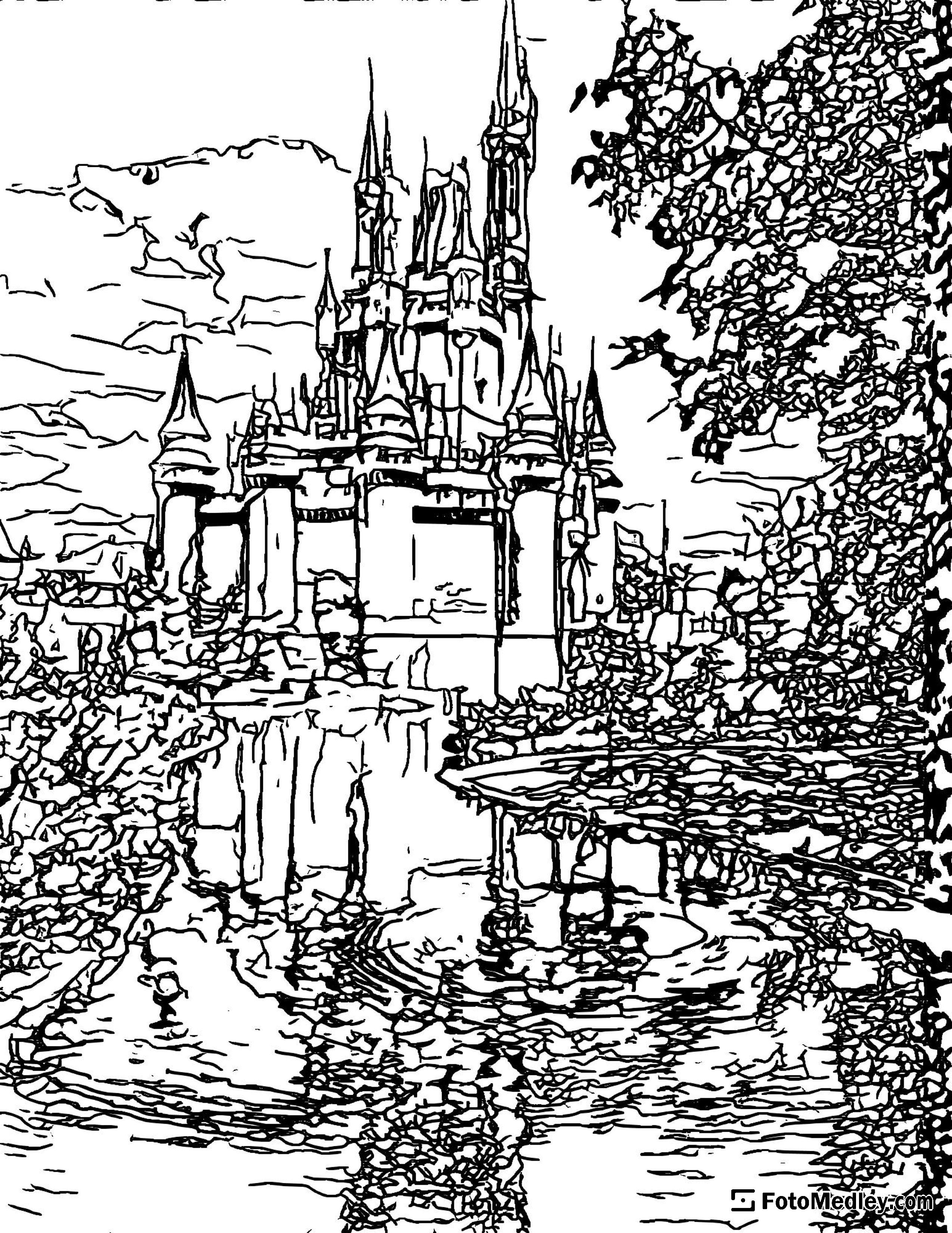 A detailed coloring page of the Cinderella Castle seen from the side, with a pond and trees.